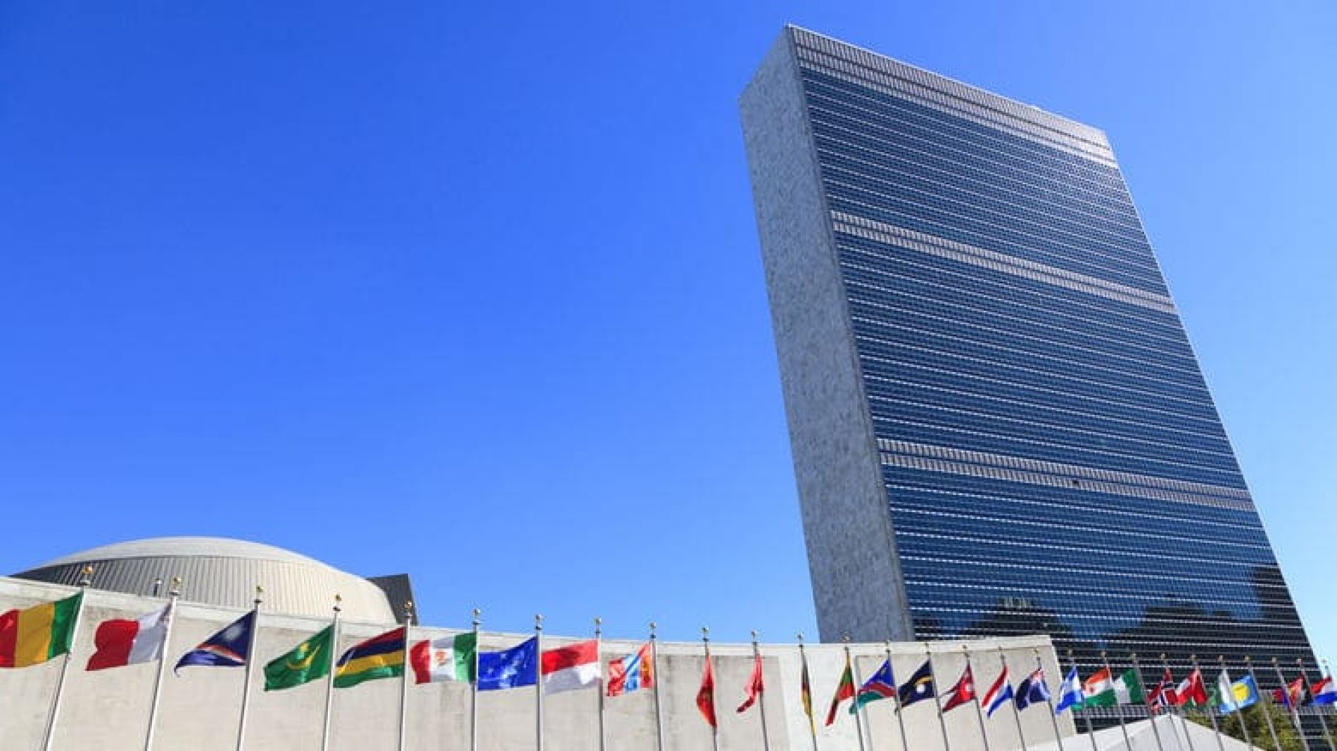 Apply for the UN Delegate Programme for Ireland