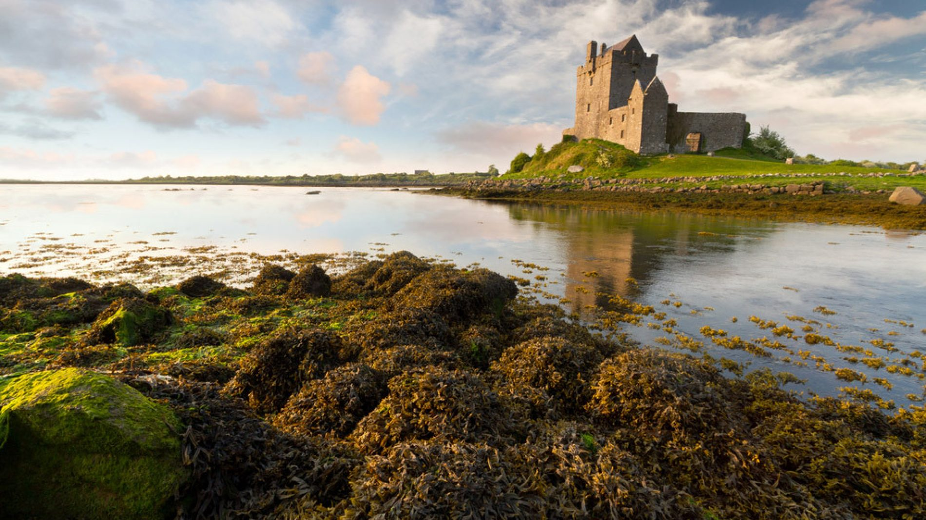 Galway_87204271