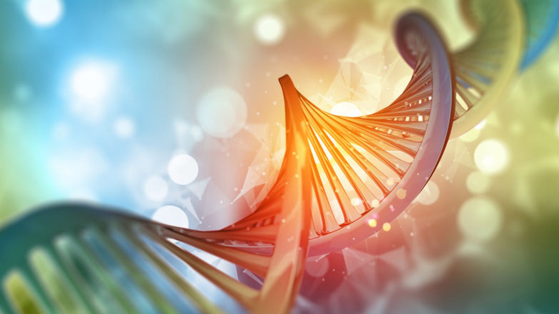 Why we need to consider the ethics of gene editing