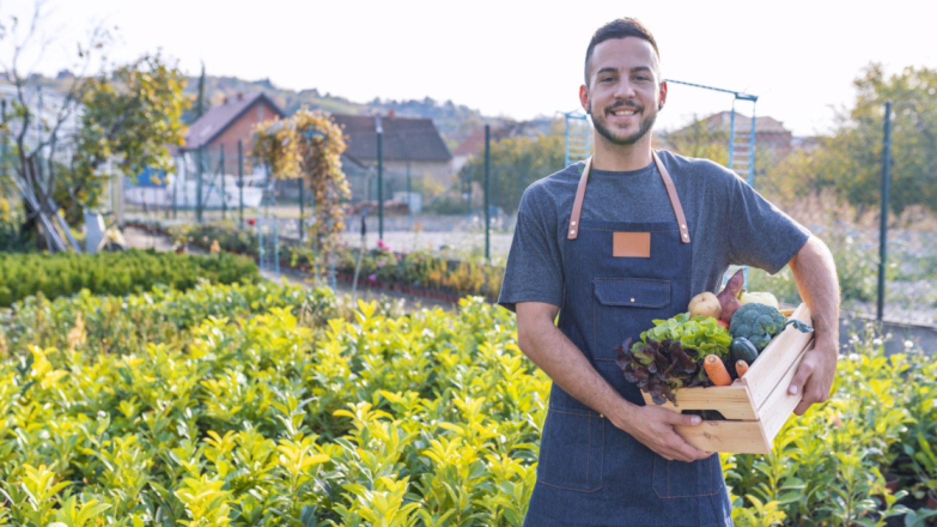 Young-man-growing-vegetables-pER7aL