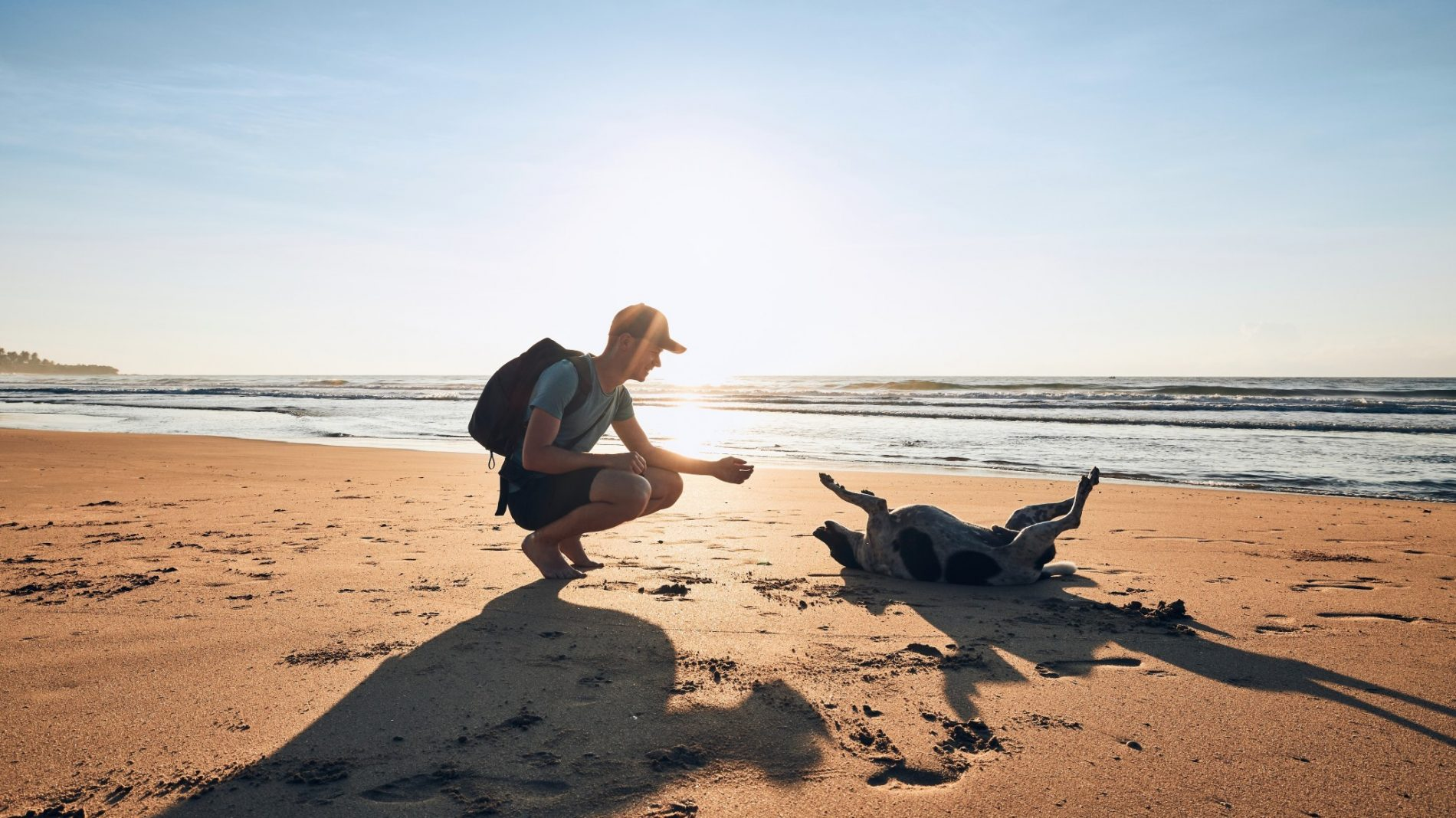 Young man on the beach with his dog during lockdown