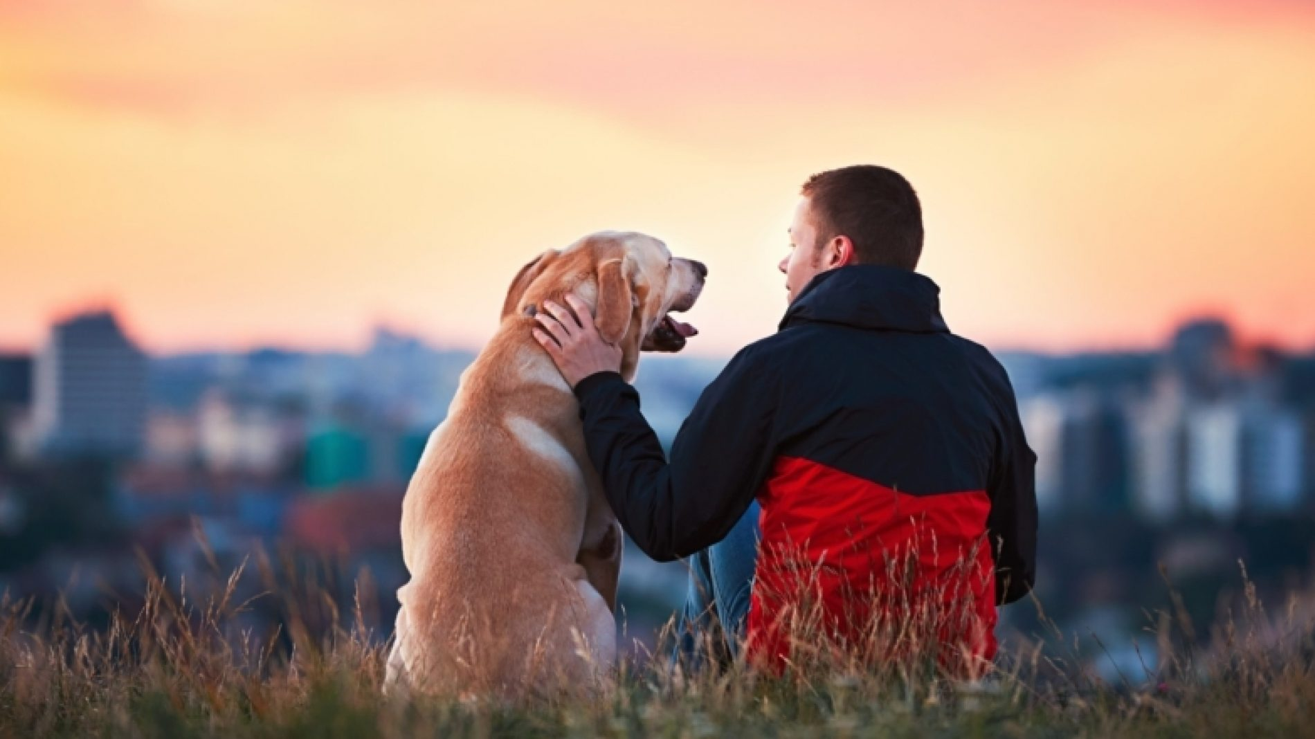 Young-man-with-his-dog-looking-at-a-view-ryrfit