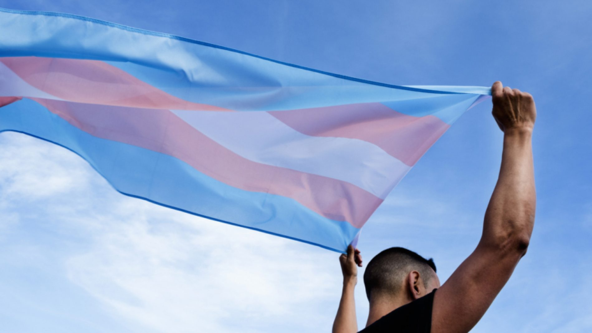 Young-person-holding-a-trans-pride-flag-BsDeGc