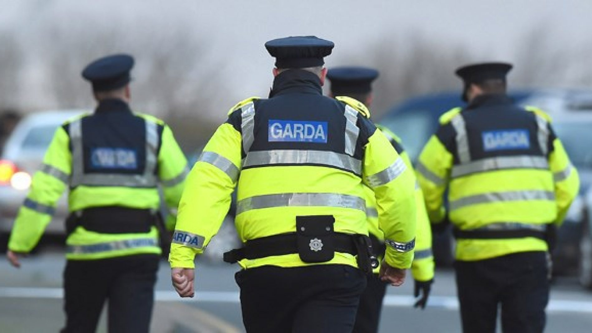 A group of gardaí with their backs to the camera