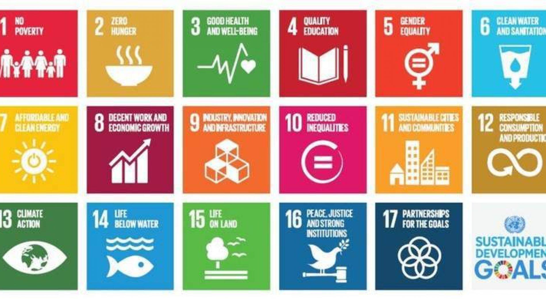 chart of sustainable development goals
