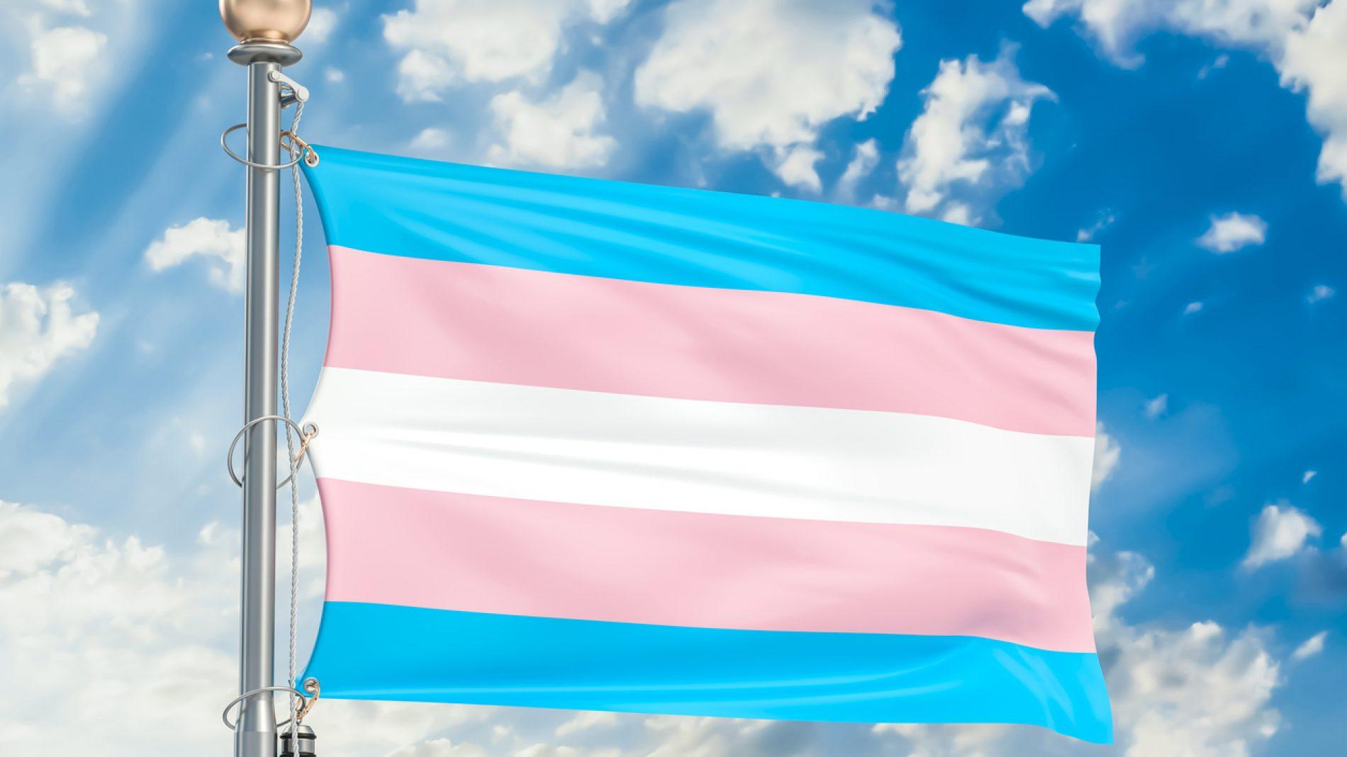 Transgender flag waving in blue cloudy sky, 3D rendering